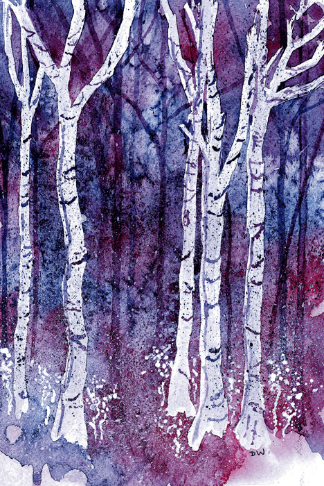 'Enchanted Forest'  (watercolour 2009)